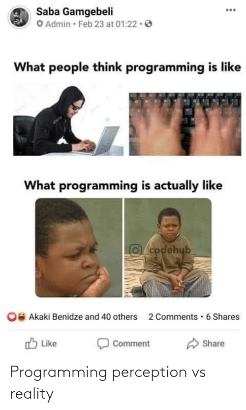 Vs Reality: Programming perception vs reality