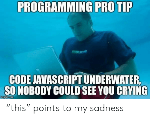 "Pro Tip: PROGRAMMING PRO TIP  CODE JAVASCRIPT UNDERWATER  SO NOBODY COULD SEE YOU CRYING  imgfip.com ""this"" points to my sadness"