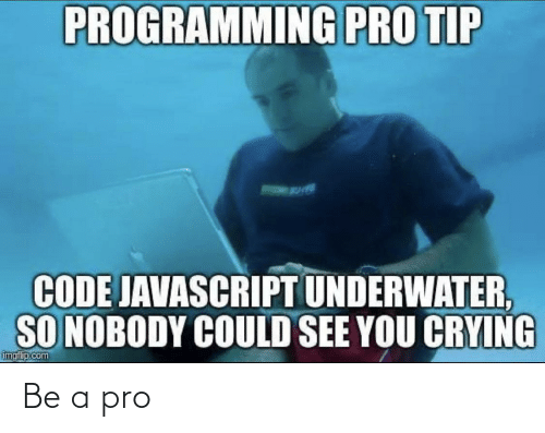 Pro Tip: PROGRAMMING PRO TIP  CODE JAVASCRIPT UNDERWATER,  SO NOBODY COULD SEE YOU CRYING  imgf p.com Be a pro