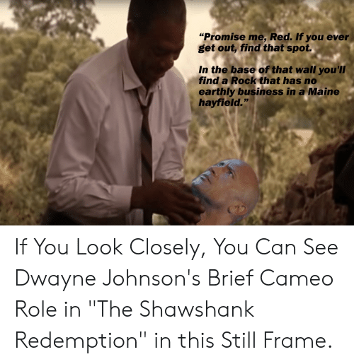 """The Shawshank Redemption, Business, and Maine: """"Promise me, Red. If you ever  get out, find that spot.  In the base of that wall you'll  find a Rock that has no  earthly business in a Maine  hayfield."""" If You Look Closely, You Can See Dwayne Johnson's Brief Cameo Role in """"The Shawshank Redemption"""" in this Still Frame."""