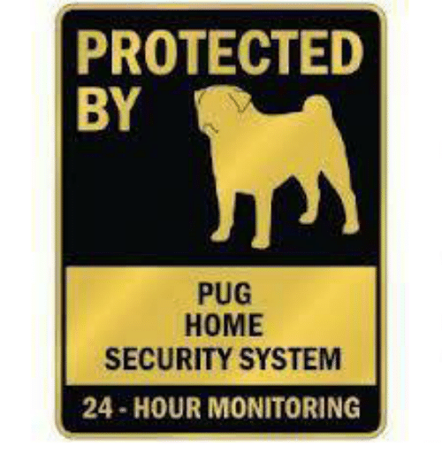 home security: PROTECTED  BY  PUG  HOME  SECURITY SYSTEM  24-HOUR MONITORING