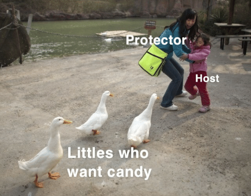 Littles: Protector  Host  Littles who  want candy