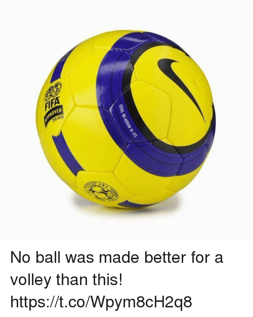 volley: PROVED  253 W2E No ball was made better for a volley than this! https://t.co/Wpym8cH2q8