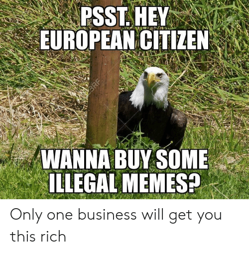 Illegal Memes: PSST.HEY  EUROPEAN CITIZEN  WANNA BUY SOME  ILLEGAL MEMES? Only one business will get you this rich