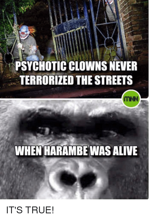 psychotically: PSYCHOTIC CLOWNS NEVER  TERRORIZED THE STREETS  WHEN HARAMBE WAS ALIVE IT'S TRUE!