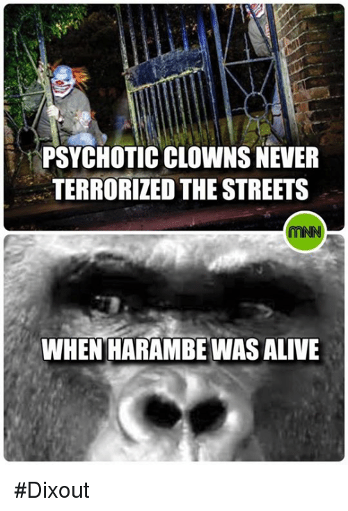 psychotically: PSYCHOTIC CLOWNS NEVER  TERRORIZED THE STREETS  WHEN HARAMBE WASALIVE #Dixout