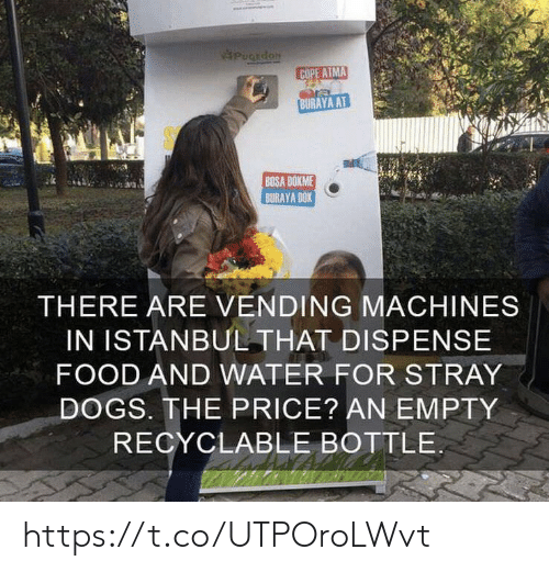 cope: PuCEdoN  COPE ATMA  BURAYA AT  BOSA DOKME  BURAYA DOK  THERE ARE VENDING MACHINES  IN ISTANBUL THAT DISPENSE  FOOD AND WATER FOR STRAY  DOGS. THE PRICE? AN EMPTY  RECYCLABLE BOTTLE https://t.co/UTPOroLWvt