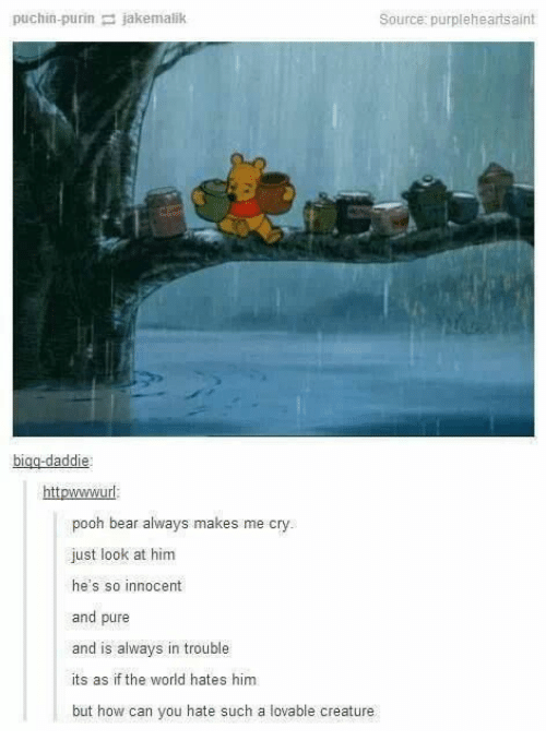 pooh: puchin-purin jakemalik  Source: purpleheartsaint  bigg-daddie  httpwwwurl  pooh bear always makes me cry.  just look at him  he's so innocent  and pure  and is always in trouble  its as if the world hates him  but how can you hate such a lovable creature