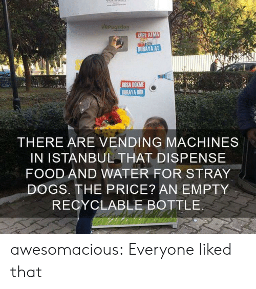 cope: PugEdoN  COPE ATMA  BURAYA AT  BOSA DOKME  BURAYA DOK  THERE ARE VENDING MACHINES  IN ISTANBUL THAT DISPENSE  FOOD AND WATER FOR STRAY  DOGS. THE PRICE? AN EMPTY  RECYCLABLE BOTTLE awesomacious:  Everyone liked that