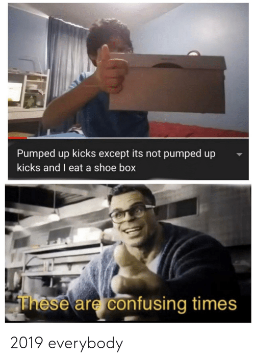 pumped up kicks: Pumped up kicks except its not pumped up  kicks and I eat a shoe box  These are confusing times 2019 everybody