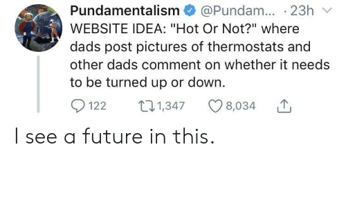 """Future, Pictures, and Idea: Pundamentalism @Pundam. 23h  WEBSITE IDEA: """"Hot Or Not?"""" where  dads post pictures of thermostats and  other dads comment on whether it needs  to be turned up or down.  1221347 8,034 I see a future in this."""