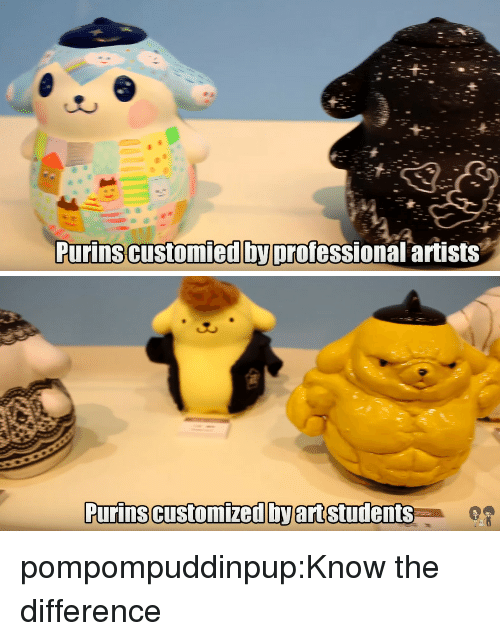 Tumblr, Blog, and Http: Purinscustomied byprofessional artists   Purins customized by art students pompompuddinpup:Know the difference