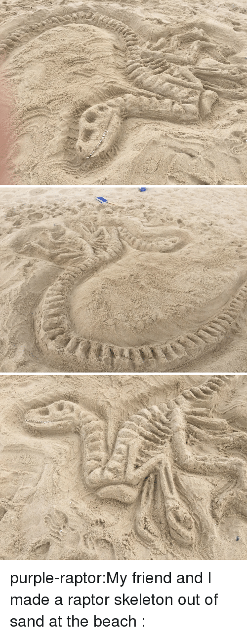 raptor: purple-raptor:My friend and I made a raptor skeleton out of sand at the beach :