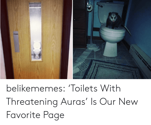 Tumblr, Blog, and Page: PUSH belikememes: 'Toilets With Threatening Auras' Is Our New Favorite Page