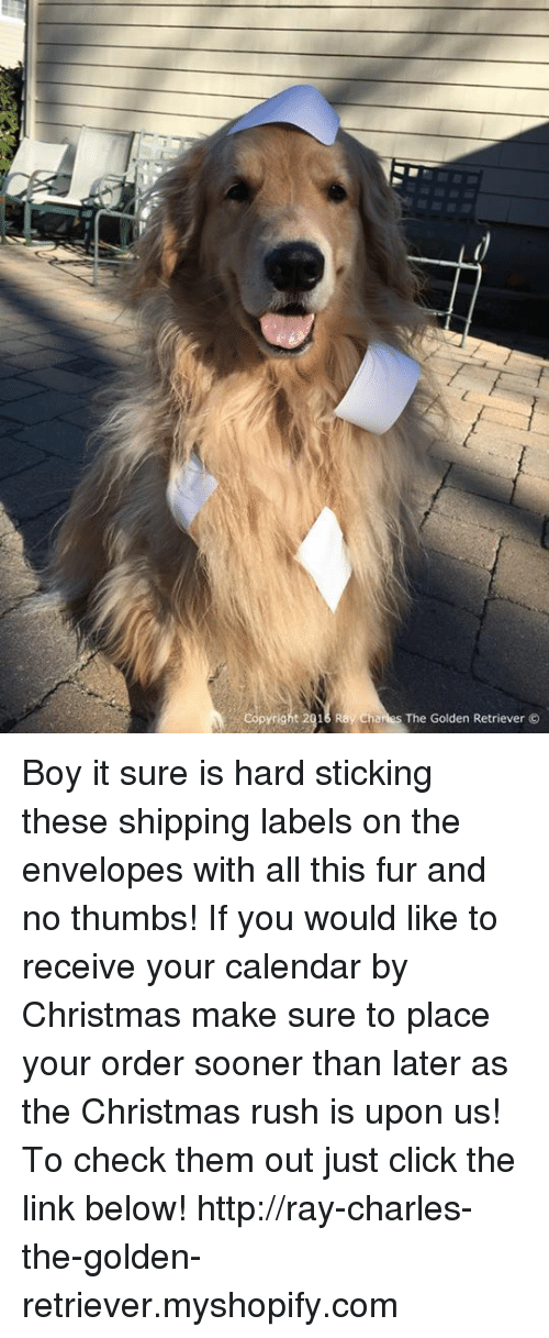 Envelops: pyright 2016 Ray Charles The Golden Retriever  O Boy it sure is hard sticking these shipping labels on the envelopes with all this fur and no thumbs! If you would like to receive your calendar by Christmas make sure to place your order sooner than later as the Christmas rush is upon us! To check them out just click the link below! http://ray-charles-the-golden-retriever.myshopify.com