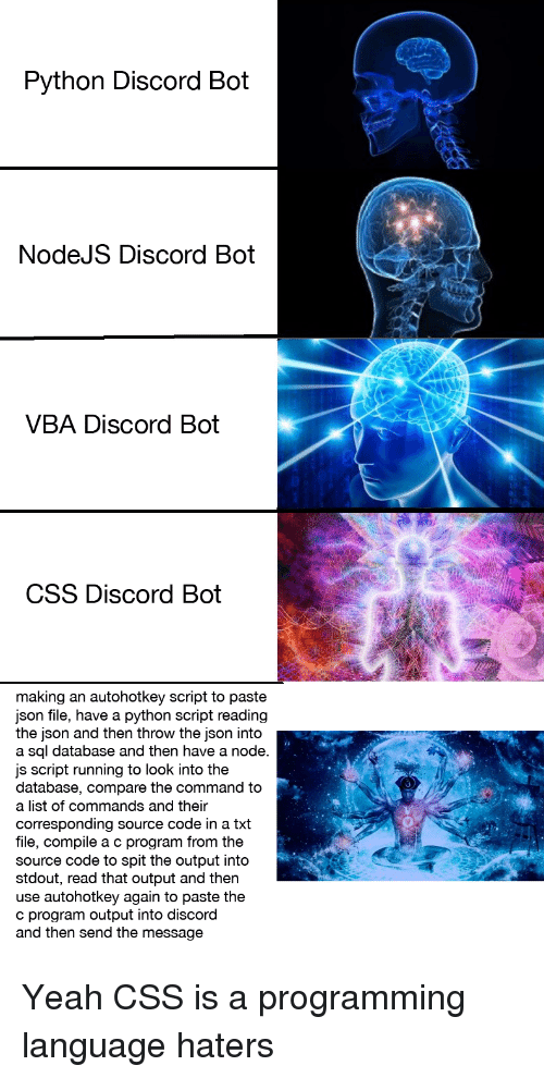 vba: Python Discord Bot  NodeJS Discord Bot  VBA Discord Bot  CSS Discord Bot  making an autohotkey script to paste  json file, have a python script reading  the json and then throw the json into  a sql database and then have a node  js script running to look into the  database, compare the command to  a list of commands and their  corresponding source code in a txt  file, compile a c program from the  source code to spit the output into  stdout, read that output and then  use autohotkey again to paste the  c program output into discord  and then send the message