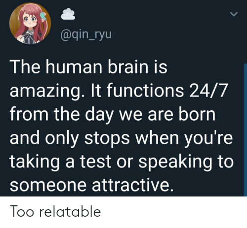Brain, Test, and Relatable: @qin_ryu  The human brain is  amazing. It functions 24/7  from the day we are born  and only stops when you're  taking a test or speaking to  someone attractive Too relatable