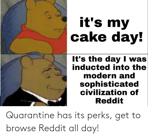 reddit all: Quarantine has its perks, get to browse Reddit all day!