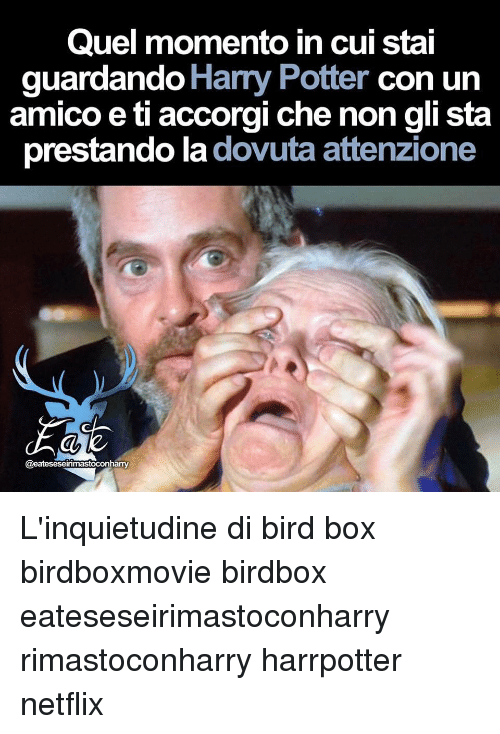 Harry Potter, Memes, and Netflix: Quel momento in cui stai  guardando Harry Potter con u  amico e ti accorgi che non gli sta  prestando la dovuta attenzione  aeateseseirimastoconhaTY L'inquietudine di bird box birdboxmovie birdbox eateseseirimastoconharry rimastoconharry harrpotter netflix