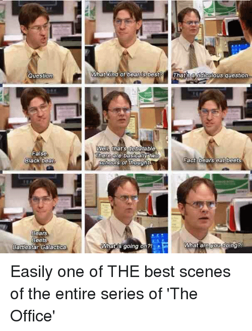 battlestar galactica: Question  False  Black bear  Bears  Beets  Battlestar Galactica  What kind of bear is best?  That sa ridiculous question  Well, that's debatable  There are basically  Fact bears eat beets  Schools of thought  What are you doing?  What is going on? Easily one of THE best scenes of the entire series of 'The Office'