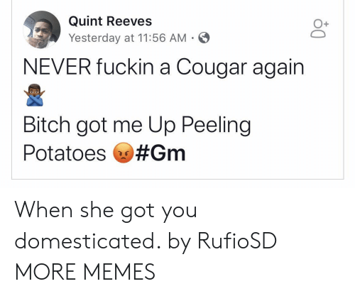Bitch, Dank, and Memes: Quint Reeves  Yesterday at 11:56 AM  O+  NEVER fuckin a Cougar again  Bitch got me Up Peeling  Potatoes When she got you domesticated. by RufioSD MORE MEMES