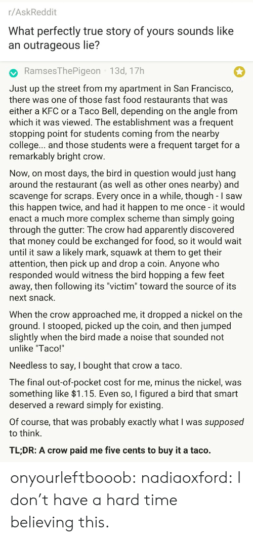 "Likely: r/AskReddit  What perfectly true story of yours sounds like  an outrageous lie?   RamsesThePigeon 13d, 17h  Just up the street from my apartment in San Francisco,  there was one of those fast food restaurants that was  either a KFC or a Taco Bell, depending on the angle from  which it was viewed. The establishment was a frequent  stopping point for students coming from the nearby  college... and those students were a frequent target for a  remarkably bright crow  Now, on most days, the bird in question would just hang  around the restaurant (as well as other ones nearby) and  scavenge for scraps. Every once in a while, though - I saw  this happen twice, and had it happen to me once - it would  enact a much more complex scheme than simply going  through the gutter: The crow had apparently discovered  that money could be exchanged for food, so it would wait  until it saw a likely mark, squawk at them to get their  attention, then pick up and drop a coin. Anyone who  responded would witness the bird hopping a few feet  away, then following its ""victim"" toward the source of its  next snack.  When the crow approached me, it dropped a nickel on the  ground. I stooped, picked up the coin, and then jumped  slightly when the bird made a noise that sounded not  unlike ""Taco!'  Needless to say, I bought that crow a taco.  The final out-of-pocket cost for me, minus the nickel, was  something like >l.T5. Even so, I figured a bird that smart  deserved a reward simply for existing  Of course, that was probably exactly what I was supposed  to think.  TL;DR: A crow paid me five cents to buy it a taco. onyourleftbooob:  nadiaoxford: I don't have a hard time believing this."