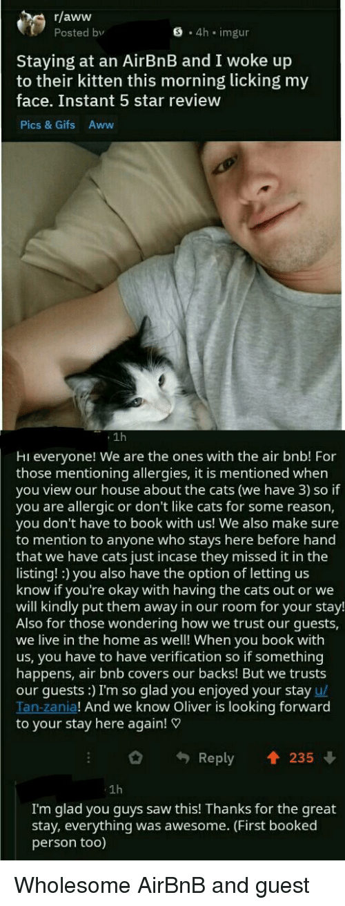 Airbnb: r/aww  Posted bv  S 4h imgur  Staying at an AirBnB and I woke up  to their kitten this morning licking my  face. Instant 5 star review  Pics & Gifs Aww  1h  Hi everyone! We are the ones with the air bnb! For  those mentioning allergies, it is mentioned when  you view our house about the cats (we have 3) so if  you are allergic or don't like cats for some reason,  you don't have to book with us! We also make sure  to mention to anyone who stays here before hand  that we have cats just incase they missed it in the  listing! :) you also have the option of letting us  know if you're okay with having the cats out or we  will kindly put them away in our room for your stay!  Also for those wondering how we trust our guests,  we live in the home as well! When you book with  us, you have to have verification so if something  happens, air bnb covers our backs! But we trusts  our guests:) I'm so glad you enjoyed your stay u/  Tan-zania! And we know Oliver is looking forward  to your stay here again!  Reply 235  1h  I'm glad you guys saw this! Thanks for the great  stay, everything was awesome. (First booked  person too) Wholesome AirBnB and guest