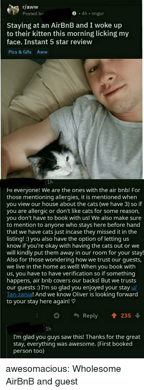 Airbnb: r/aww  Posted bv  S 4h imgur  Staying at an AirBnB and I woke up  to their kitten this morning licking my  face. Instant 5 star review  Pics & Gifs Aww  1h  Hi everyone! We are the ones with the air bnb! For  those mentioning allergies, it is mentioned when  you view our house about the cats (we have 3) so if  you are allergic or don't like cats for some reason,  you don't have to book with us! We also make sure  to mention to anyone who stays here before hand  that we have cats just incase they missed it in the  listing! :) you also have the option of letting us  know if you're okay with having the cats out or we  will kindly put them away in our room for your stay!  Also for those wondering how we trust our guests,  we live in the home as well! When you book with  us, you have to have verification so if something  happens, air bnb covers our backs! But we trusts  our guests:) I'm so glad you enjoyed your stay u/  Tan-zania! And we know Oliver is looking forward  to your stay here again!  Reply 235  1h  I'm glad you guys saw this! Thanks for the great  stay, everything was awesome. (First booked  person too) awesomacious:  Wholesome AirBnB and guest
