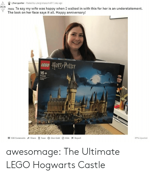 the look: r/harrypotter Posted by u/englishpsycho87 1 day ago  24.3k  u Media To say my wife was happy when I walked in with this for her is an understatement.  The look on her face says it all. Happy anniversary!  16+  71043  Cestie  530 ComShareSave Give Gold Hide Report  87% Upvoted awesomage:  The Ultimate LEGO Hogwarts Castle