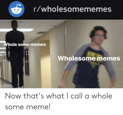 Memes Wholesome: r/wholesomememes  Whole some memes  Wholesome memes Now that's what I call a whole some meme!