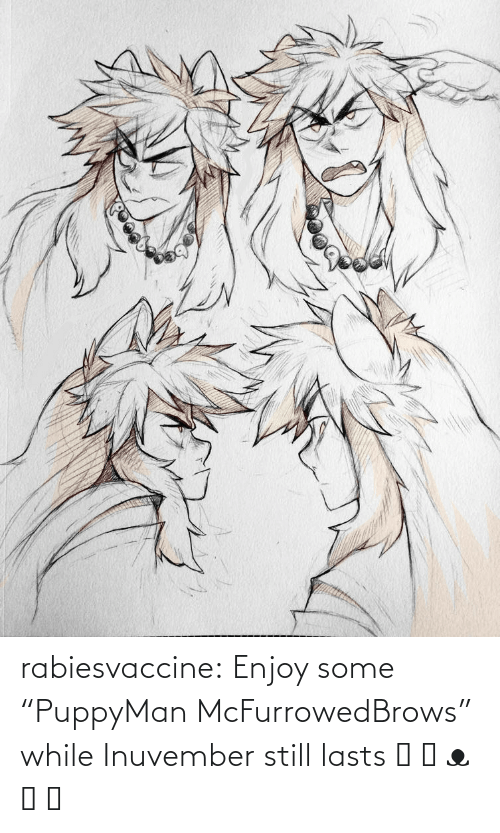 "Lasts: rabiesvaccine:  Enjoy some ""PuppyMan McFurrowedBrows"" while Inuvember still lasts ˵ ಠ ᴥ ಠ ˵"