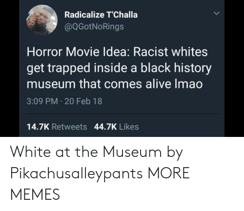 Black History: Radicalize T'Challa  @QGotNoRings  Horror Movie Idea: Racist whites  get trapped inside a black history  museum that comes alive Imao  3:09 PM 20 Feb 18  14.7K Retweets 44.7K Likes White at the Museum by Pikachusalleypants MORE MEMES