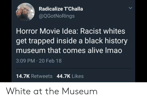 Black History: Radicalize T'Challa  @QGotNoRings  Horror Movie Idea: Racist whites  get trapped inside a black history  museum that comes alive Imao  3:09 PM 20 Feb 18  14.7K Retweets 44.7K Likes White at the Museum
