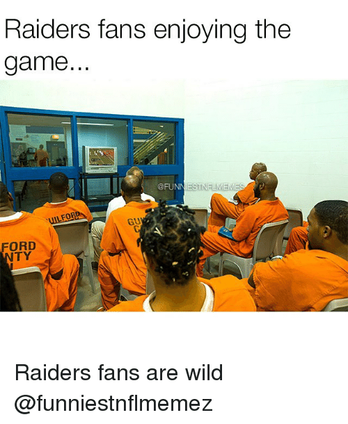 Nfl, The Game, and Raiders: Raiders fans enjoying the  game.  @FUNNIES  FORR  GU Raiders fans are wild @funniestnflmemez