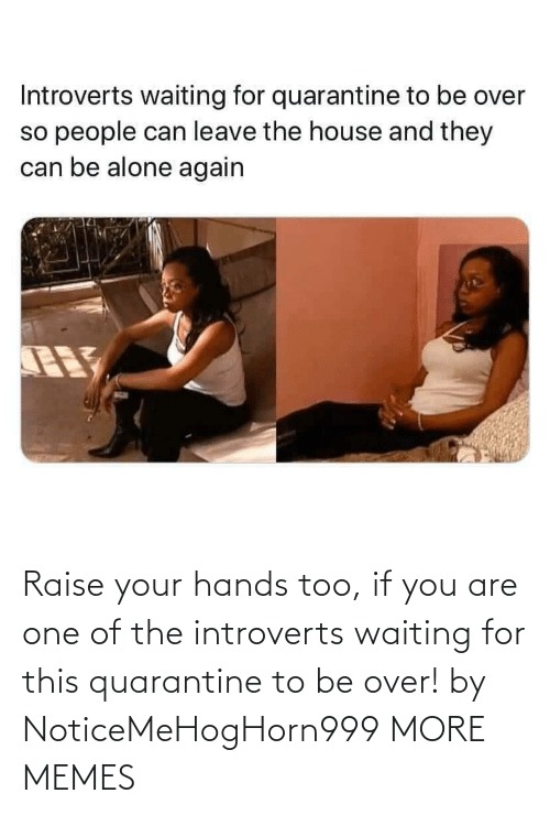 introverts: Raise your hands too, if you are one of the introverts waiting for this quarantine to be over! by NoticeMeHogHorn999 MORE MEMES