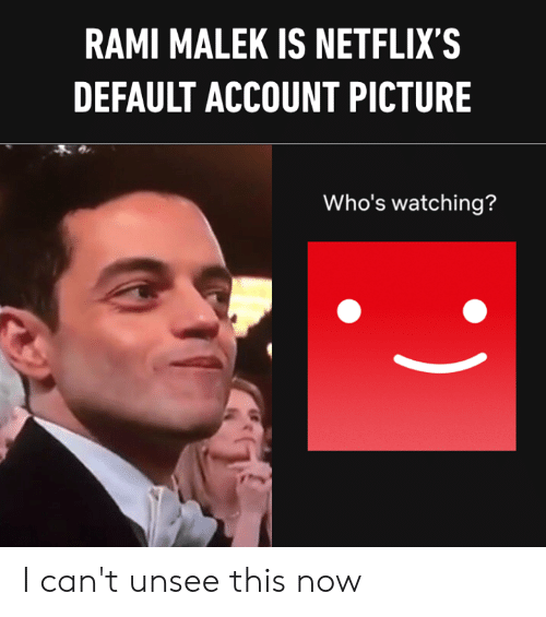 Dank, 🤖, and Rami Malek: RAMI MALEK IS NETFLIX'S  DEFAULT ACCOUNT PICTURE  Who's watching? I can't unsee this now