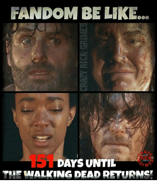 Walking Dead Returns: RANDOM BELK  DAYS UNTIL  THE WALKING DEAD RETURNS!