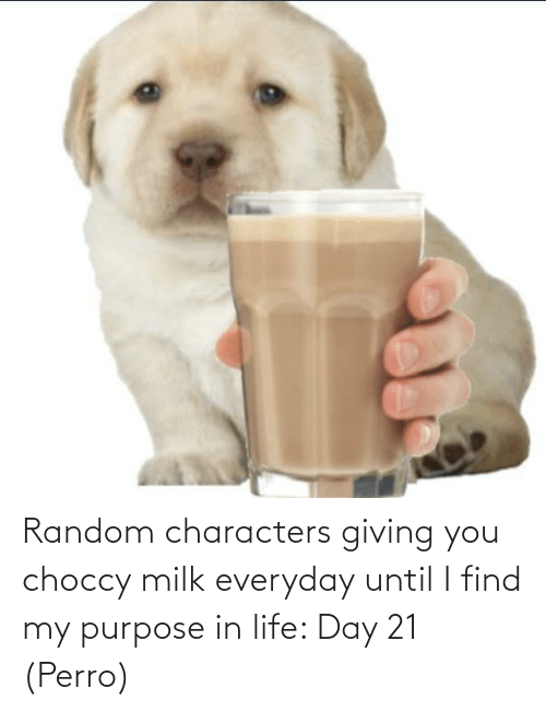 Perro: Random characters giving you choccy milk everyday until I find my purpose in life: Day 21 (Perro)