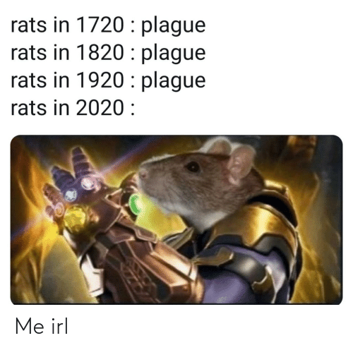 plague: rats in 1720 : plague  rats in 1820 : plague  rats in 1920 : plague  rats in 2020 : Me irl