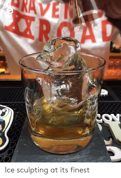 Dank, 🤖, and Ice: RAVET  RCAL  COY Ice sculpting at its finest
