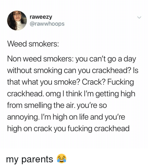 Crackhead, Fucking, and Life: raweezy  @rawwhoops  Weed smokers  Non weed smokers: you can't go a day  without smoking can you crackhead? ls  that what you smoke? Crack? Fucking  crackhead. omg l think I'm getting high  from smelling the air. you're so  annoying. I'm high on life and you're  high on crack you fucking crackhead my parents 😂