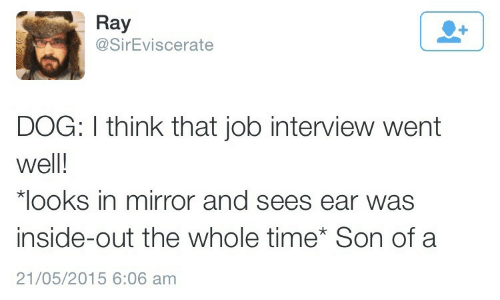 Job interview: Ray  @SirEviscerate  DOG: I think that job interview went  well!  looks in mirror and sees ear was  inside-out the whole time Son of a  21/05/2015 6:06 am