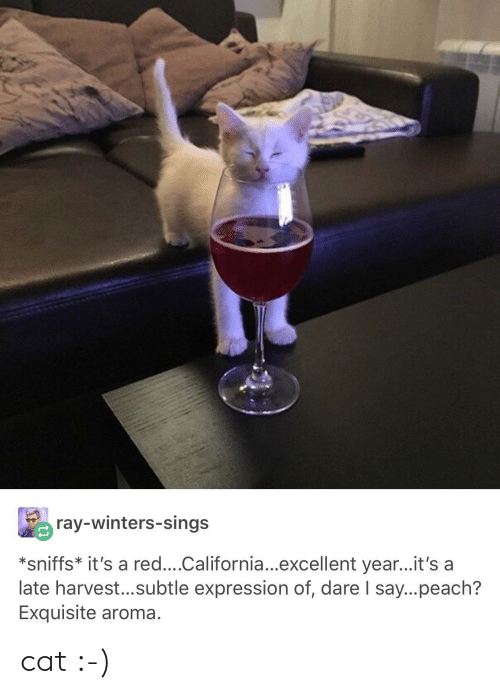 aroma: ray-winters-sings  *sniffs* it's a red....California...excellent year...it's a  late harvest...subtle expression of, dare I say...peach?  Exquisite aroma. cat :-)