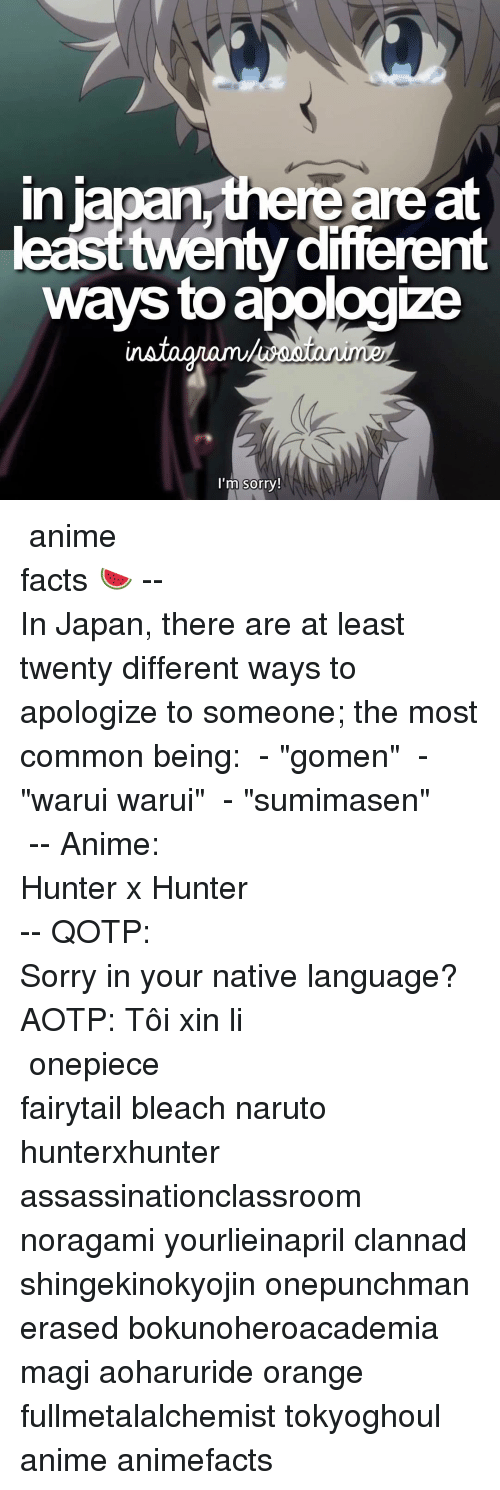"""Memes, Clannad, and 🤖: re are at  in  different  ways toapologize  I'm sorry! ⠀⠀⠀⠀⠀⠀⠀⠀⠀⠀⠀⠀⠀⠀⠀⠀⠀⠀⠀⠀⠀⠀⠀⠀⠀⠀⠀⠀⠀⠀⠀⠀⠀⠀⠀⠀⠀⠀「 anime facts 🍉 」⠀⠀⠀⠀⠀⠀⠀⠀⠀⠀⠀⠀⠀⠀⠀⠀⠀⠀⠀⠀⠀⠀⠀⠀⠀⠀⠀⠀⠀⠀--⠀ In Japan, there are at least twenty different ways to apologize to someone; the most common being: ごめん - """"gomen"""" 悪い悪い - """"warui warui"""" すみません - """"sumimasen"""" ⠀⠀⠀⠀⠀⠀⠀⠀⠀⠀⠀⠀⠀⠀⠀⠀⠀⠀⠀⠀⠀⠀⠀⠀⠀⠀ -- Anime: Hunter x Hunter ⠀⠀⠀⠀⠀⠀⠀⠀⠀⠀⠀⠀⠀⠀⠀⠀⠀⠀⠀⠀⠀⠀⠀⠀⠀⠀⠀⠀⠀⠀-- QOTP: Sorry in your native language? AOTP: Tôi xin lỗi ⠀⠀⠀⠀⠀⠀⠀⠀⠀⠀⠀⠀⠀⠀⠀⠀⠀⠀⠀⠀⠀⠀⠀⠀⠀⠀⠀⠀⠀ onepiece fairytail bleach naruto hunterxhunter assassinationclassroom noragami yourlieinapril clannad shingekinokyojin onepunchman erased bokunoheroacademia magi aoharuride orange fullmetalalchemist tokyoghoul anime animefacts"""