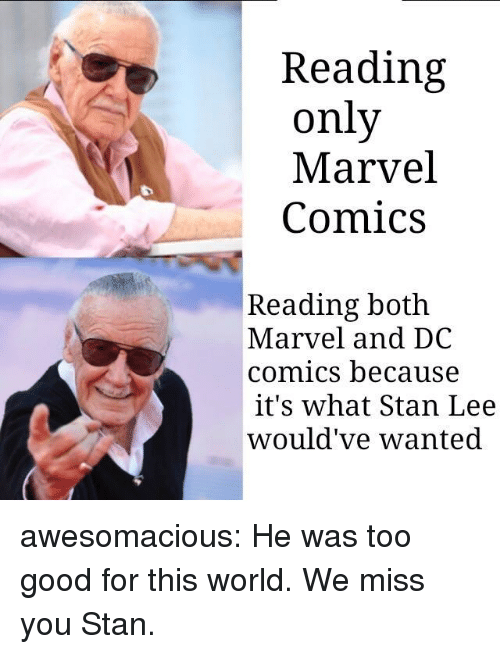 Marvel Comics: Reading  only  Marvel  Comics  Reading both  Marvel and DC  comics because  it's what Stan Lee  would've wanted awesomacious:  He was too good for this world. We miss you Stan.