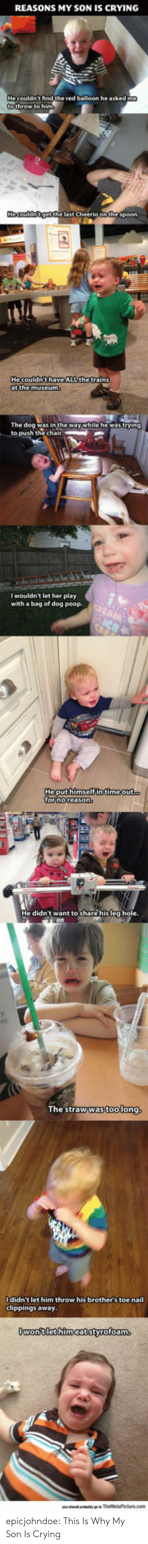 Crying, Poop, and Tumblr: REASONS MY SON IS CRYING  Hecouldnge the last Cheerio onthespoon.  Hecouldn'thaveALL the trains  I wouldn't let her play  with a bag of dog poop.  Heput himself in time out  The straw was too long,  Ididn't let him throw his brother's toe nail  clippings away.  Owon'tlet himcatstyrofoam epicjohndoe:  This Is Why My Son Is Crying