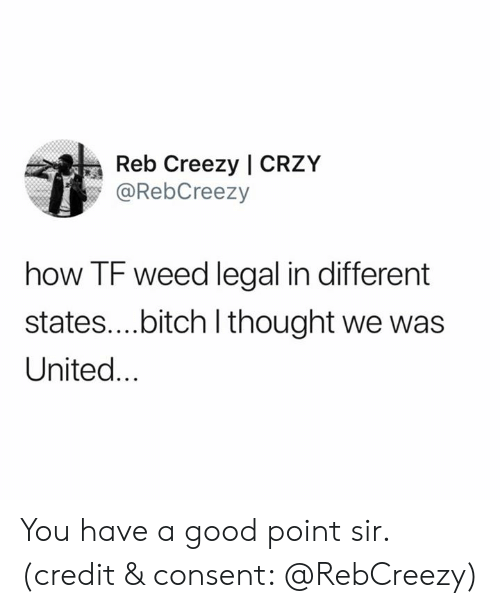 Bitch, Weed, and Good: Reb Creezy | CRZY  @RebCreezy  how TF weed legal in different  states....bitch I thought we was  United... You have a good point sir. (credit & consent: @RebCreezy)