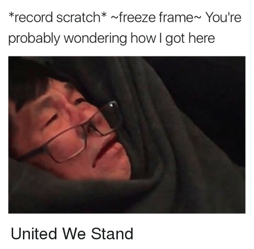 United We Stand: *record scratch* freeze frame~ You're  probably wondering how I got here <p>United We Stand</p>