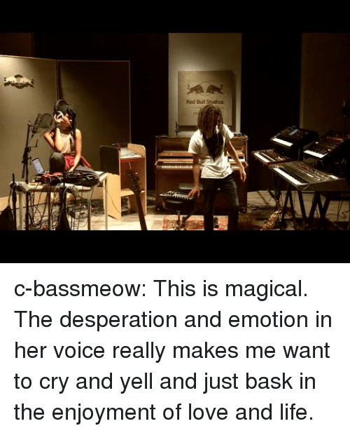 Life, Love, and Tumblr: Red Buil Studios c-bassmeow:  This is magical. The desperation and emotion in her voice really makes me want to cry and yell and just bask in the enjoyment of love and life.