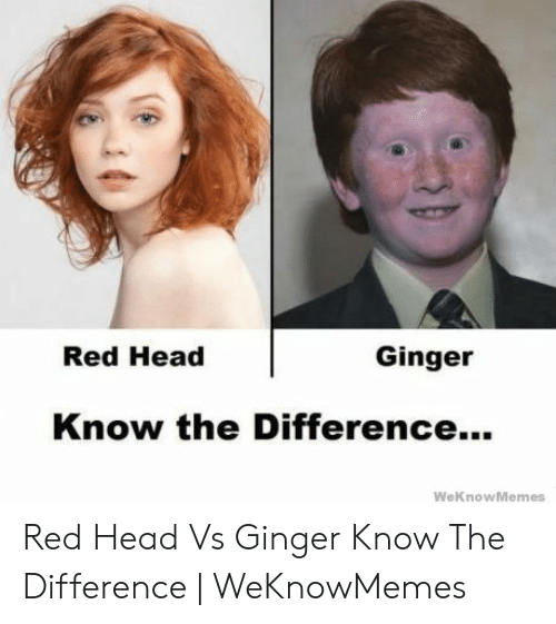 Red Hair Meme: Red Head  Ginger  Know the Difference...  WeKnow Memes Red Head Vs Ginger Know The Difference   WeKnowMemes